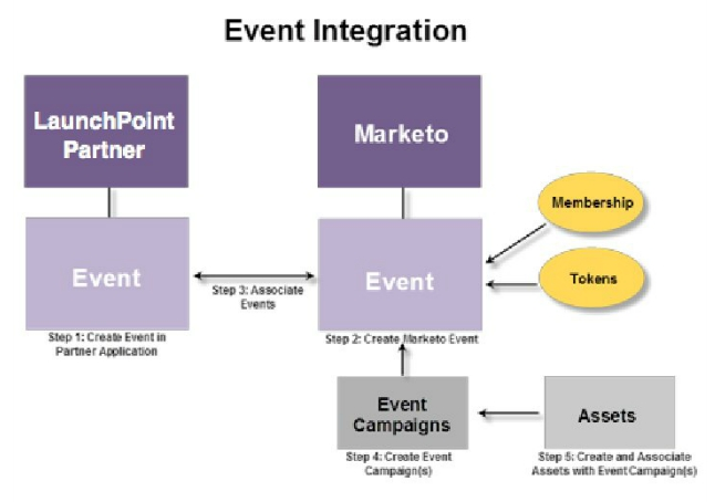 Adobe Connect Marketo Integration CRM